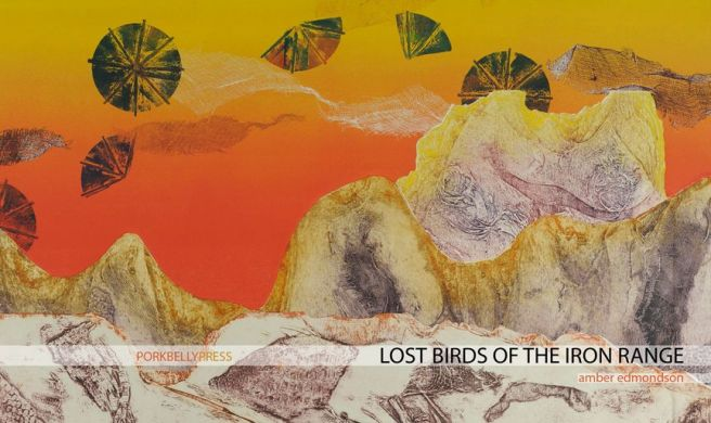 lostbirds(1)