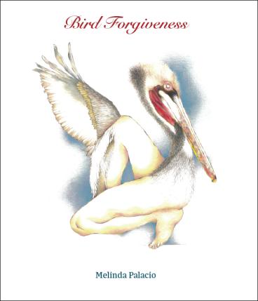 bird forgiveness